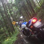 日光からの隠れ道(笑) 栃木県道14号線 GSX400 インパルス type S