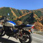 2週間ぶりのバイクの時間!紅葉めぐり… 国道122号 GSX400 インパルス type S