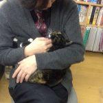 里子に出した猫さんが亡くなりました …