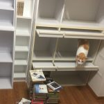 引越し後、初めての模様替え?新しい本棚を購入してみた…